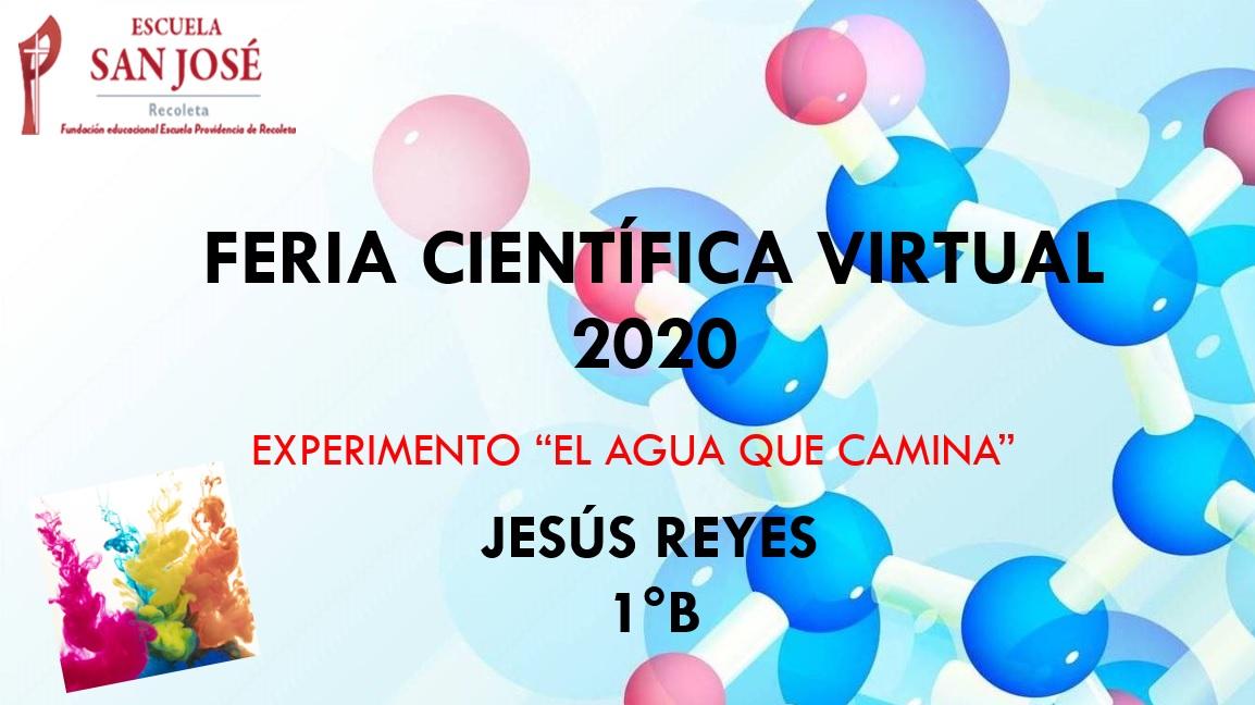 Feria Científica Virtual: estudiantes participan experimentando en casa